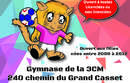 Tournoi fémini'hand 2019 - dimanche 24 mars (gymnase de la boisse - 01120)